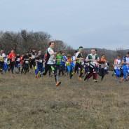 Tavaszi Spartacus Kupa – 2016. március 19-20. Gánt