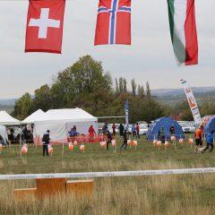 Őszi Spartacus Kupa – 2017. október 28-29. Csákberény